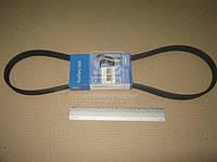 Ремень поликлиновый (производитель SKF) VKMV6PK1120