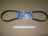 Ремень поликлиновый (производитель SKF) VKMV6PK1050