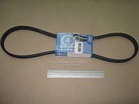 Ремень поликлиновый (производитель SKF) VKMV6DK1195