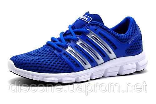 Кроссовки мужские Adidas Crazycool, синие