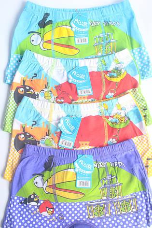 Детские трусы 12-14 лет «Angry Birds», фото 2