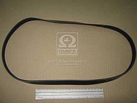 Ремень поликлиновый 5PK1125 (производитель DONGIL) 5PK1125