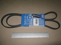 Ремень поликлиновый (производитель SKF) VKMV4PK1482