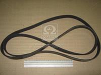 Ремень поликлиновый (производитель PARTS-MALL) PV2-002