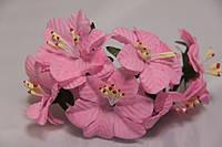 5634-1-15 розовая  упаковка 10 букетов  (60шт)