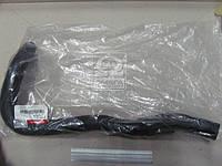 Патрубок радиатора верхний (производитель Mobis) 254112E101