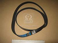Ремень поликлиновый 6PK1400 (производитель DONGIL) 6PK1400