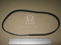 Ремень поликлиновый 4PK812 (производитель DONGIL) 4PK812
