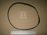 Ремень поликлиновый 4PK885 (производитель DONGIL) 4PK885