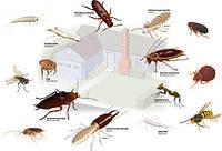 Средства от вредителей: тараканов, муравьев, клопов, блох, мух, моли, ос