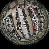 Видеокамера GeoVision GV-FE5302, фото 2