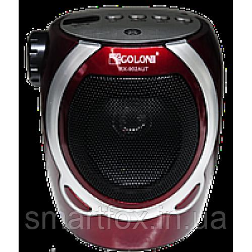 Радиоприёмник с USB GOLON RX-902AUT