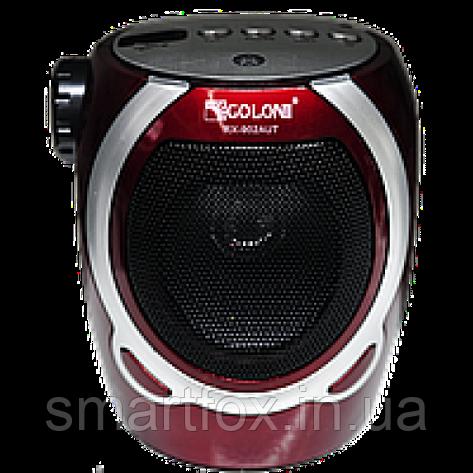 Радиоприёмник с USB GOLON RX-902AUT, фото 2