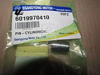 Штифт коленвала (производитель SsangYong) 6019970410