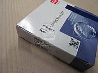 Кольца поршневые VAG 2,5TDi 81,50 2,5 x 2,0 x 3,00 mm (производитель NPR) 9-5009-50