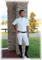 Бриджи мужские для конного спорта