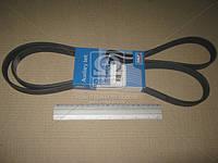 Ремень поликлиновый (производитель SKF) VKMV6PK1873