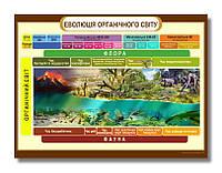 """Стенд """"Еволюція органічного світу"""" для кабінету БІОЛОГІЇ 1200х800мм"""
