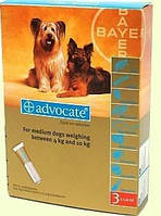 Advocate  (Адвокат) капли для собак весом от 4 до 10кг,1 пипетка (Bayer)