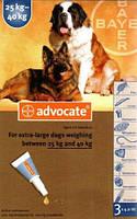 Advocate  капли для собак весом от 25кг,1 пипетка( Bayer)