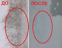 Плесень на окне. Моющее средство PRIMA SOFT Dez-1