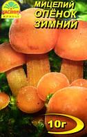 Мицелий гриба Опенок Зимний, 10г, фото 1