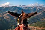 """Экскурсионный тур в Грузию """"Винный путь и горные ландшафты"""" на 7 дней / 6 ночей, фото 4"""
