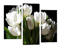 Модульная картина 247 белые тюльпаны