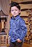 Рубашка арт.3560-4
