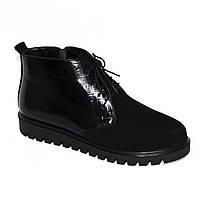 Ботинки женские черные на шнуровке, замш и кожа питон. Демисезон, фото 1