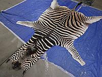 Шкуры африканской зебры на пол для декора интрьера, фото 1
