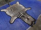 Настоящая шкура ковер из зебры Южная Африка, фото 3