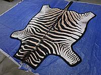 Шкура из африканской зебры на пол сделанная ковром