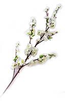 Ветка сакуры белая (125 см)(5шт/уп)