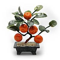 Дерево мандарин (5 плодов)(23х24х13 см)(A01)