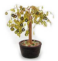 Дерево денежное в горшке (D8008) (24см)