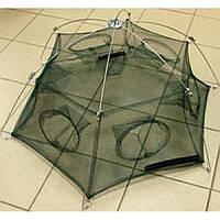 Раколовка-паук шестигранник