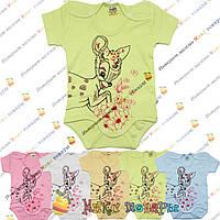 Детские бодики Бемби для мальчика и девочек Рост: 62-68-74-80-86 см (4072)