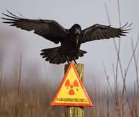 Чернобыльской катастрофе 30 лет.