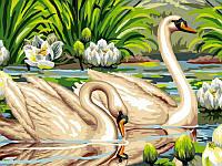 Живопись по номерам Турбо Лебеди и лотосы (VK129) 30 х 40 см