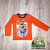 Реглан кофточка для мальчика оранжевая с собакой