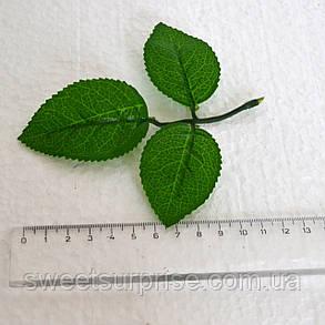 Лист розы (крупный), фото 2