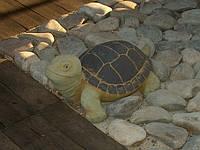 Бетонная скульптура для сада  Черепаха большая