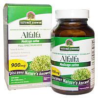 Экстракт люцерны АльфАльфа полного спектра, 900 мг, 90 капсул, Nature's Answer