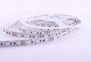 LED лента Premium Rishang RGB SMD5050, 60шт/м, 14.4W/m, IP33