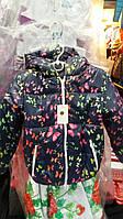 Куртка для девочки  Бабочки (В.Я.Ч.)