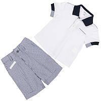 Нарядный костюм для мальчика: поло+шорты.К торжеству готов!