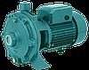 Моноблочный центробежный насос для полива Euroaqua 2 СPM