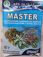 Удобрение Master для декоративно-лиственных  (Мастер) 25 гр.