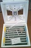 Инкубатор Квочка  МИ-30-1Э С, фото 2